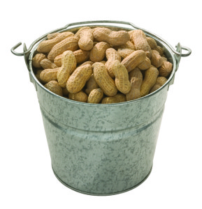Complimentary bucket of peanuts to nibble on while    perusing the menu